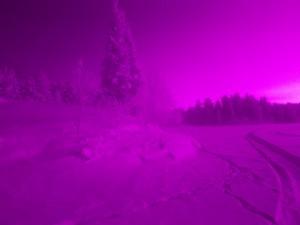 Infrared shot 2 - raw