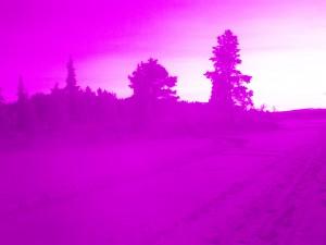 Infrared shot raw 3